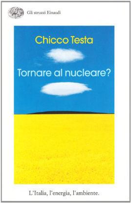 Immagine di TORNARE AL NUCLEARE? L`ITALIA, L`ENERGIA, L`AMBIENTE