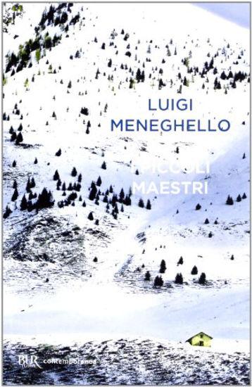 Immagine di PICCOLI MAESTRI (I)