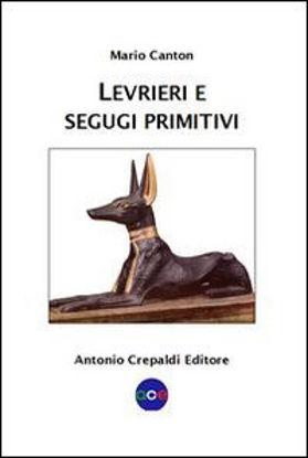 Immagine di LEVRIERI E SEGUGI PRIMITIVI