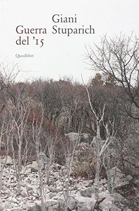 Immagine di GUERRA DEL `15