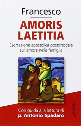 Immagine di AMORIS LAETITIA. ESORTAZIONE APOSTOLICA POSTSINODALE SULL`AMORE NELLA FAMIGLIA