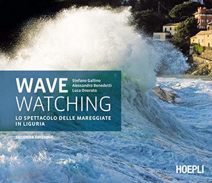 Immagine di WAVE WATCHING. LO SPETTACOLO DELLE MAREGGIATE IN LIGURIA
