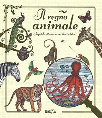 Immagine di REGNO ANIMALE. SCOPRIRLO ATTRAVERSO ANTICHE INCISIONI (IL)