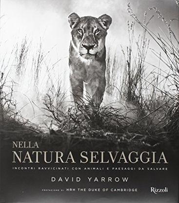 Immagine di NELLA NATURA SELVAGGIA. INCONTRI RAVVICINATI CON ANIMALI E PAESAGGI DA SALVARE. EDIZ. ILLUSTRATA