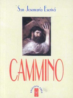 Immagine di CAMINO